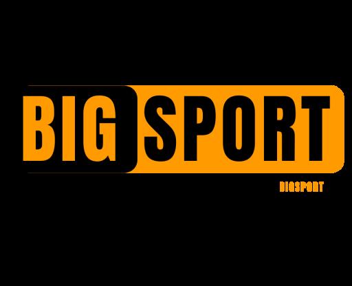 thethaobigsport.com